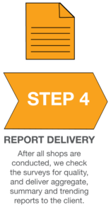 SeeLevel HX Process Infographic_Report Delivery