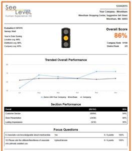 SeeLevel HX's report