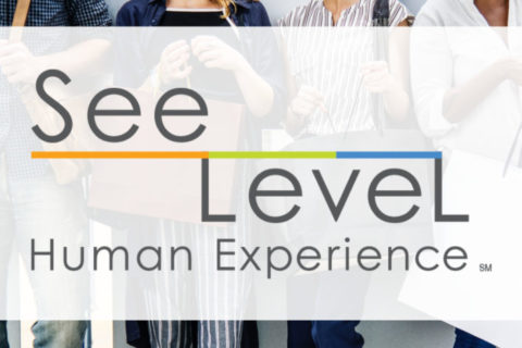 Leading market research and mystery shopping company SeeLevel HX